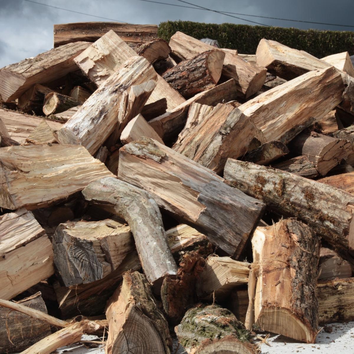 Les essences de bois en vente