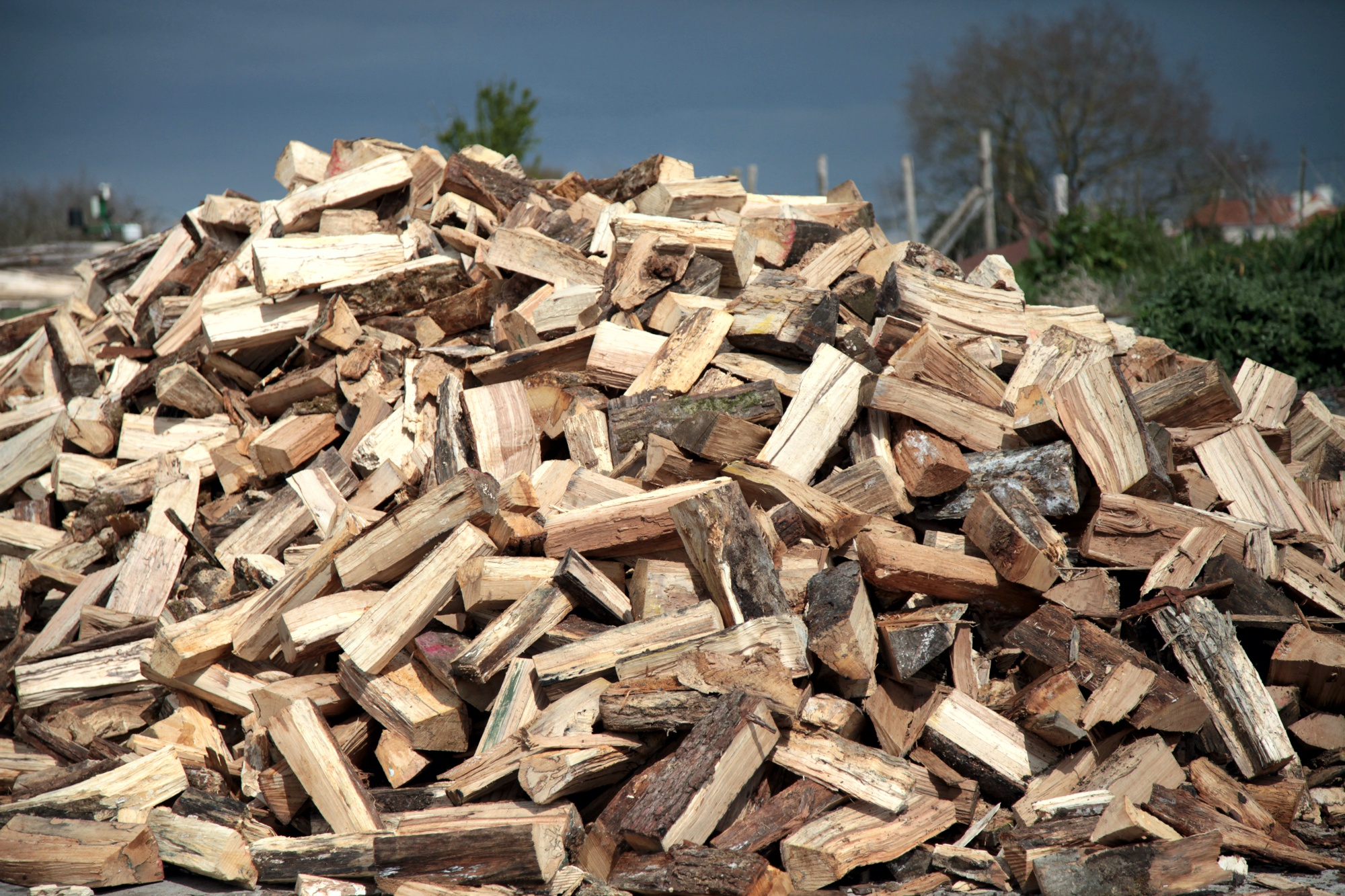 Buches et buchettes de bois