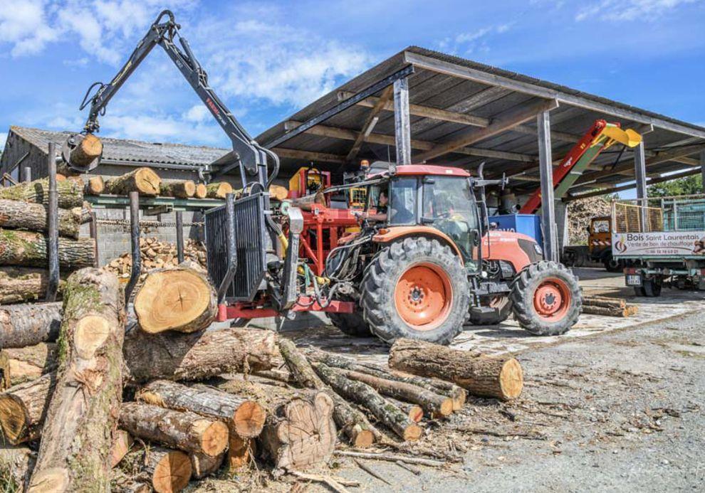 Production de bois en local